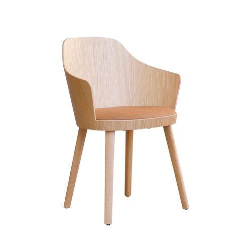 Kaiak 3160 käsinojallinen tuoli